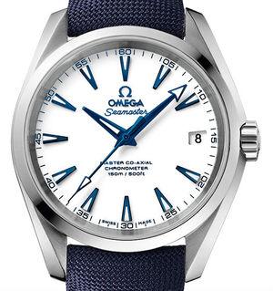 Omega Seamaster Aqua Terra 231.92.39.21.04.001