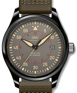 IWC Pilots Watches Classic IW324702