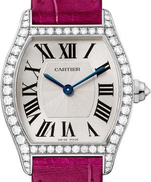 WA501007 Cartier Tortue