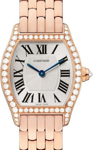 WA501010 Cartier Tortue