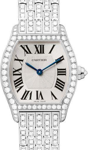 HPI00778 Cartier Tortue