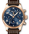 IWC Pilots Watches Classic IW392202