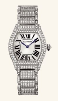 Cartier Tortue WA5049MC