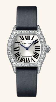 WA507231 Cartier Tortue